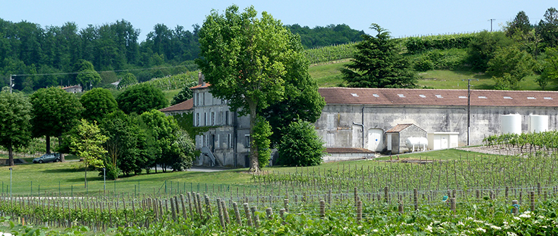 Tour of the cognac vineyard and the Domaine de la Bataille, a property belonging to Maison Hennessy, wine tourism