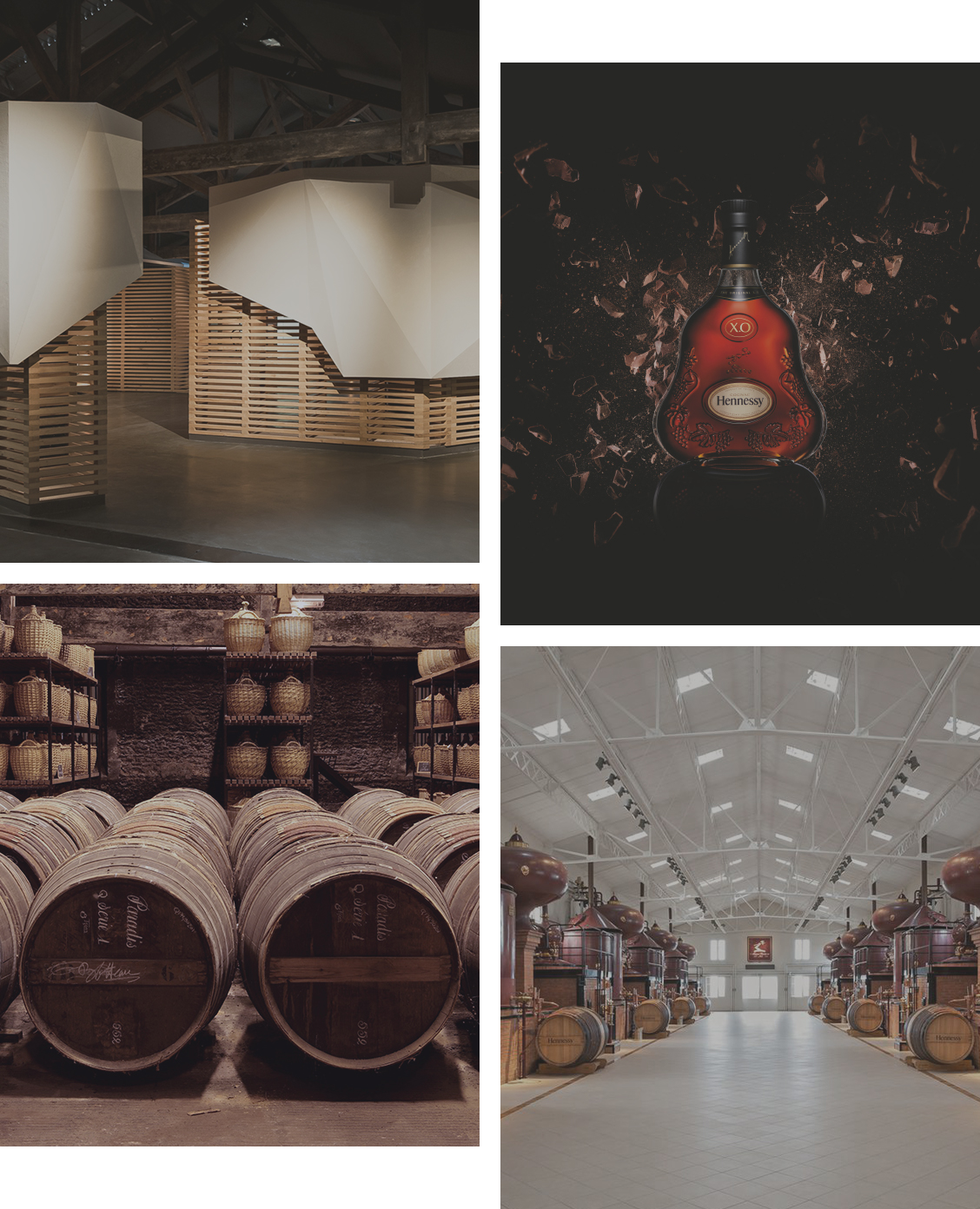The tailored tours of Maison Hennessy in Cognac, wine tourism